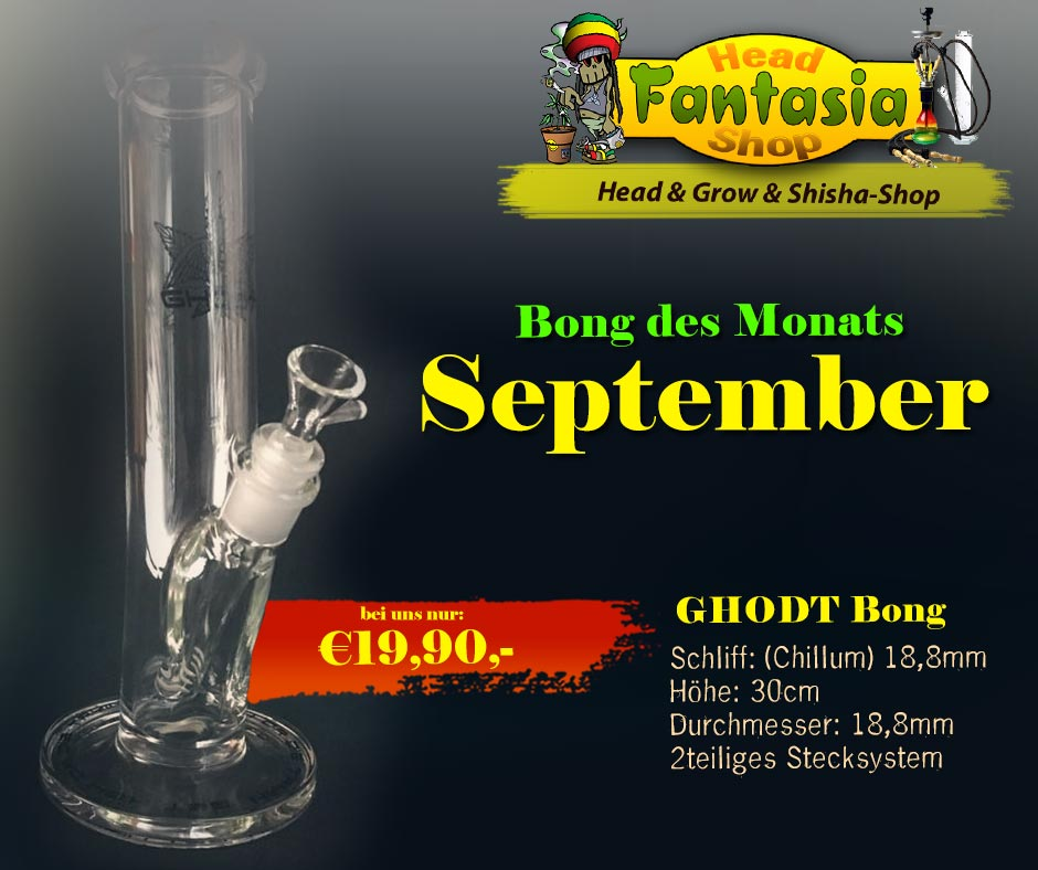 Fantasia Headshops BONG DES MONATS SEPTEMBER 2020 GHODT Bong Schliff: (Chillum) 18,8mm Höhe: 30cm Durchmesser: 18,8mm 2teiliges Stecksystem